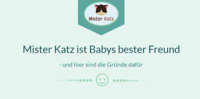 Infografik_Schnuffeltuch_Mister Katz Titel